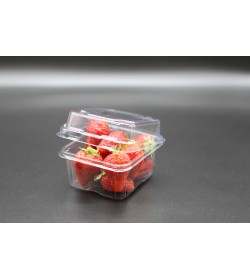 250gm SHALLOW STRAWBERRY PUNNET