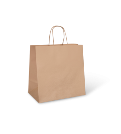 Small Kraft Paper Carry Bag with Twisted Handle